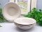 Corning Corelle Spring Pond Cereal Bowls