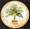 American Atelier Tropical Palms Salad Plate Set